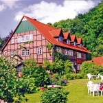 """Bauernhof Pension """"Waldmühle"""""""