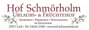 INT-314-2 Hof Schm+Ârholm2 Logo