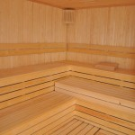 int-342-0-fortuna-resort-sauna